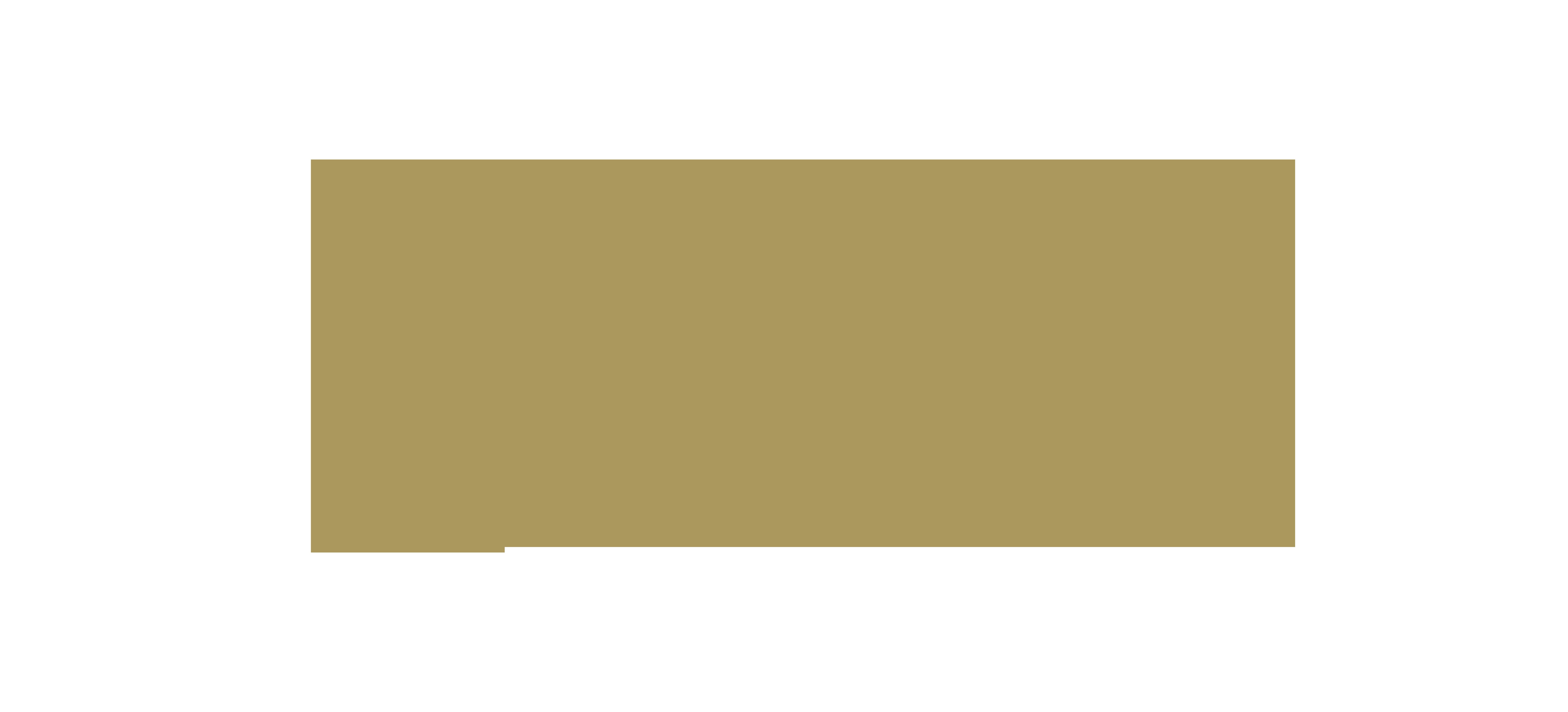 Rodin logo
